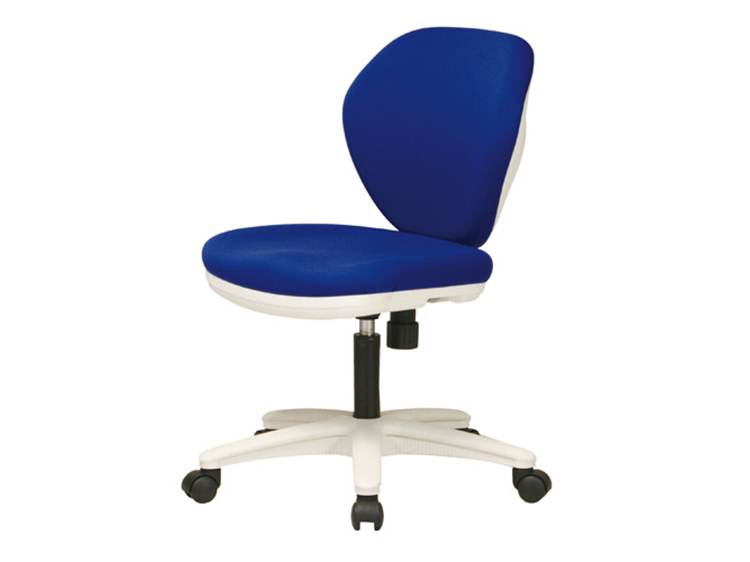 Desk Chair (Used)